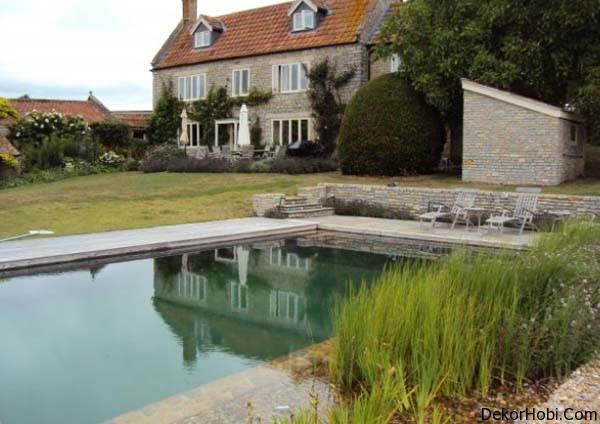 natural-swimming-pools-16