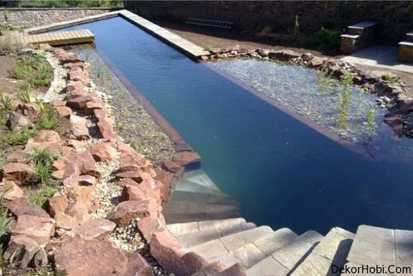 natural-swimming-pools-2
