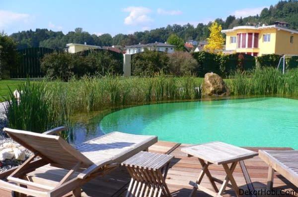 natural-swimming-pools-3