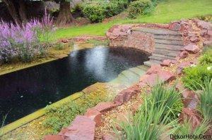 natural-swimming-pools