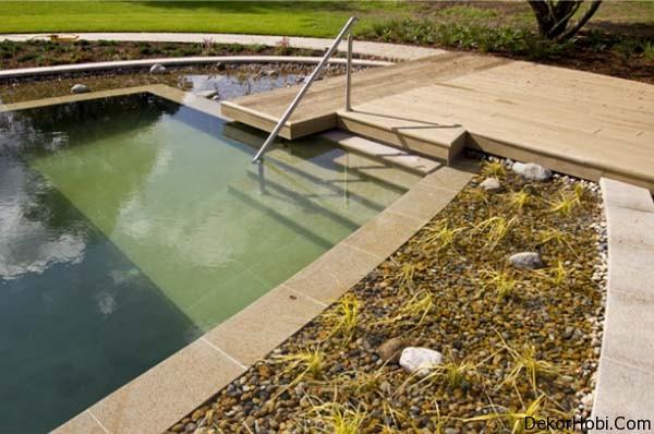 natural-swimming-pools-6