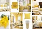 lemon-sorbet-collage-barbara-rainmaker-benjamin-moore