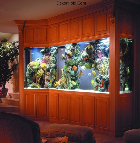 aquariums-in-interiors-10