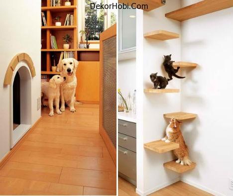 Pet-Optimized-Home-1