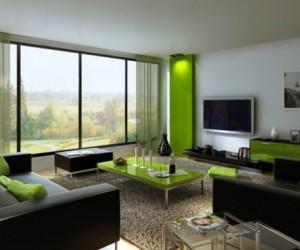 Siyah ve YEşil Oturma Odası Düzeni