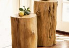original-decor-of-tree-stumps-1