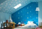 dolphin-wallpaper-clouds-on-ceiling